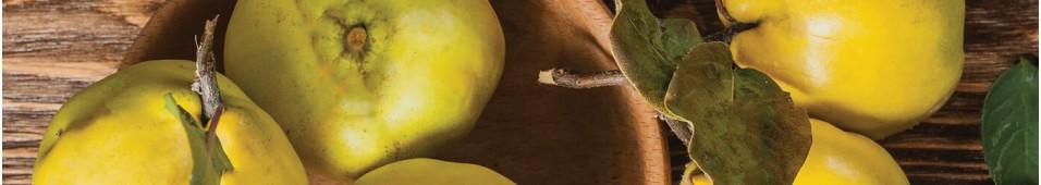 Sok jabłkowy z pigwą